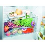 Фото Холодильник LIEBHERR CTP 2521-20