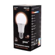 Фото Лампочки LED Gauss LED Globe 10W 2700K