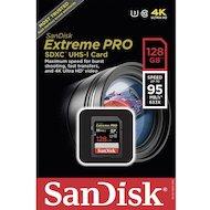 Фото Карта памяти SanDisk SDXC 128Gb Class 10 (SDSDXPA-128G-G46)