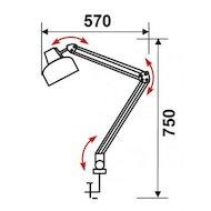 Фото Светильник настольный Трансвит Beta/Gr на струбцине лампа накаливания E27 серый 60Вт