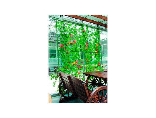 садовые товары GREEN APPLE GLSCL-6 Комплект для вьющихся растений сборный 1.8х2.1м