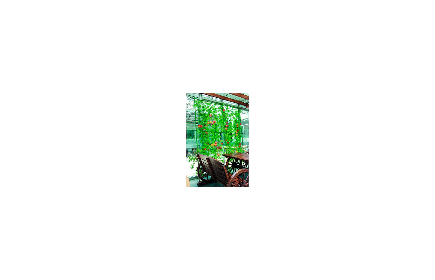 садовые товары GREEN APPLE GLSCL-2 Комплект для вьющихся растений сборный 0.9х1.8м