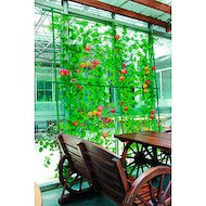 садовые товары GREEN APPLE Комплект для ввьющихся растений сборный 0.6х1.8м