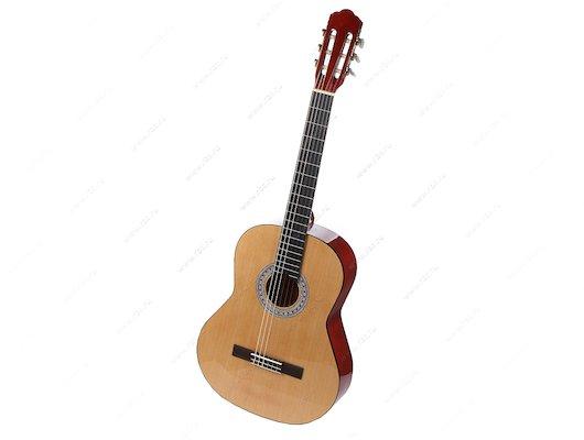 Гитара VISION Classic 10