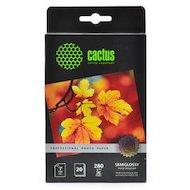 Фотобумага Cactus CS-SGA628020 Prof 10x15/280г/м2/20л./белый полуглянцевое для струйной печати