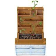 Фото 4М 00-03352 Умные растения