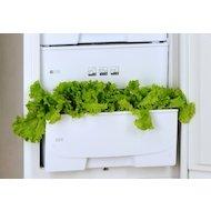 Фото Холодильник POZIS RK-149 A белый