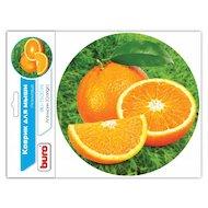 Фото Коврик для мыши BURO BU-T60039 рисунок/апельсин