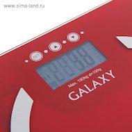 Фото Весы напольные Galaxy GL-4851