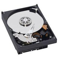 "Фото Жесткий диск WD Original SATA-III 250Gb WD2500AAKX Caviar Blue (7200rpm) 16Mb 3.5"""