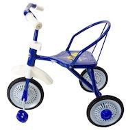 Велосипед Moby Kids 64419 Дино