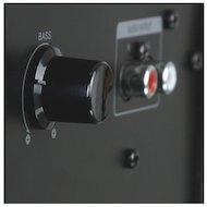 Фото Компьютерные колонки Microlab M-700U