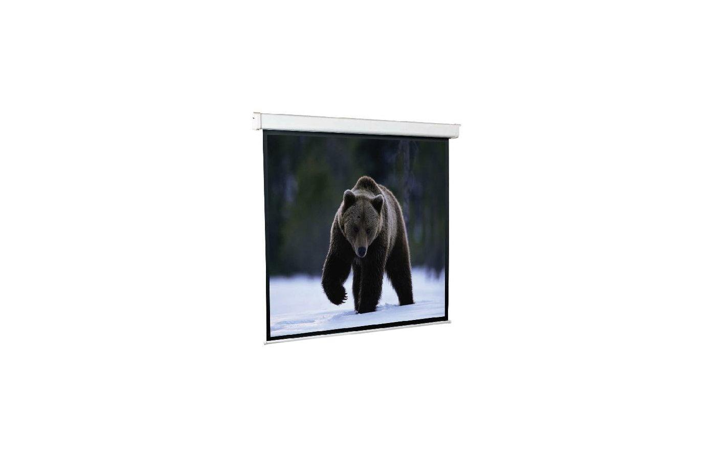 Экран для проектора ScreenMedia Economy-P 100 180x180 (180x180) 1:1 (SPM-1102) MW  настенный