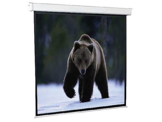 Экран для проектора ScreenMedia Economy-P 110 200x200 (200x200) 1:1 (SPM-1103) MW  настенный