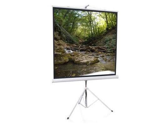 Экран для проектора ScreenMedia Apollo-T 100 180x180 (180x180) 1:1 (STM-1102) MW штатив