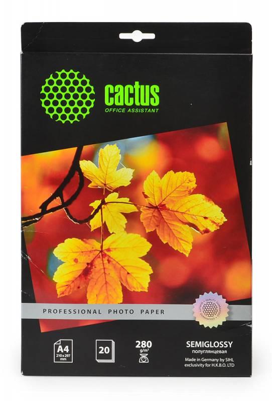 Фотобумага Cactus