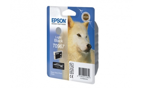 Картридж струйный Epson C13T09674010 для Stylus Photo R2880 (light black)