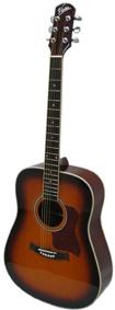 Гитара Vision Real Brand Technics 4350.000
