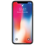 Смартфон Apple iPhone X 64GB Space Grey MQAC2RU/A в Салавате